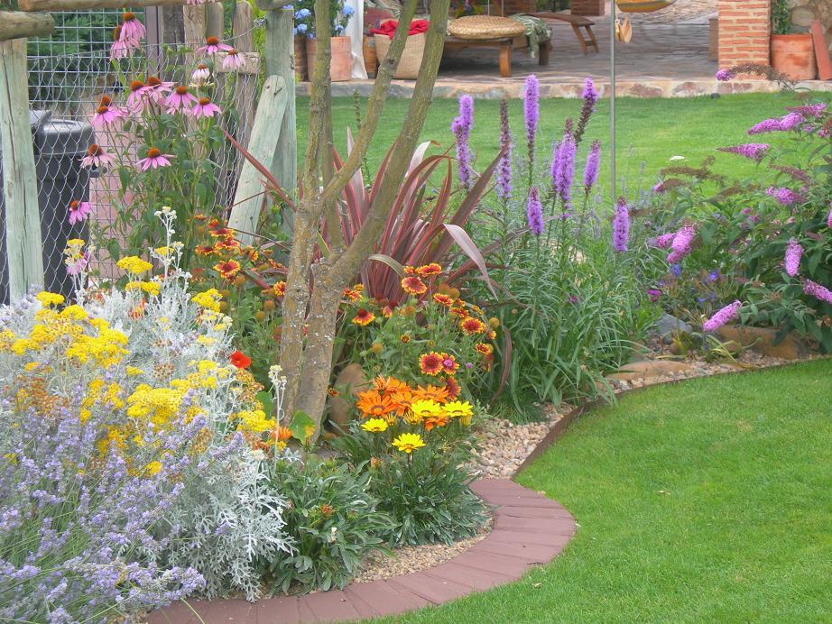 Fotos del jard n de figo y preguntas sobres sus plantas - Bordes para jardines ...