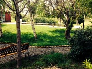 Fotos de mi jard n r stico campestre qu os parece - Jardines rusticos campestres ...