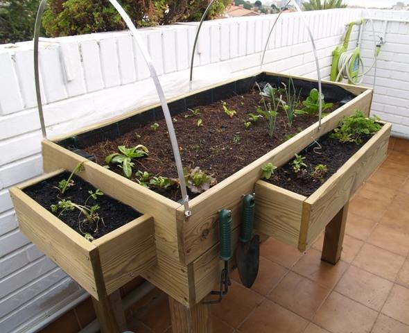 Fotos de mi huerto urbano en la terraza for Mesas de cultivo urbano